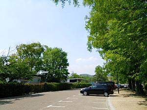 DSC_0343_1.JPG